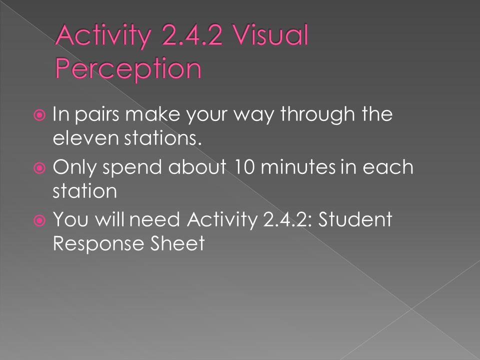 Activity 2.4.2 Visual Perception