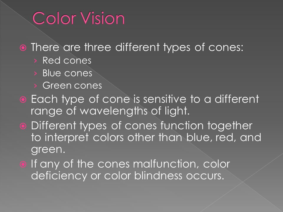 Color Vision There are three different types of cones: