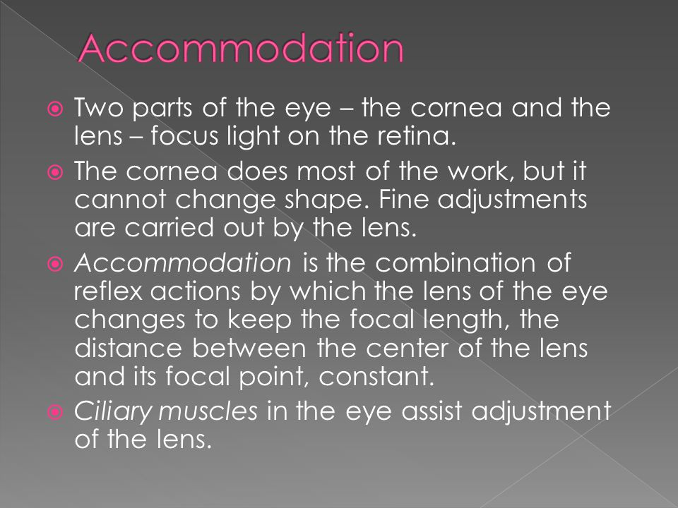 Accommodation Two parts of the eye – the cornea and the lens – focus light on the retina.