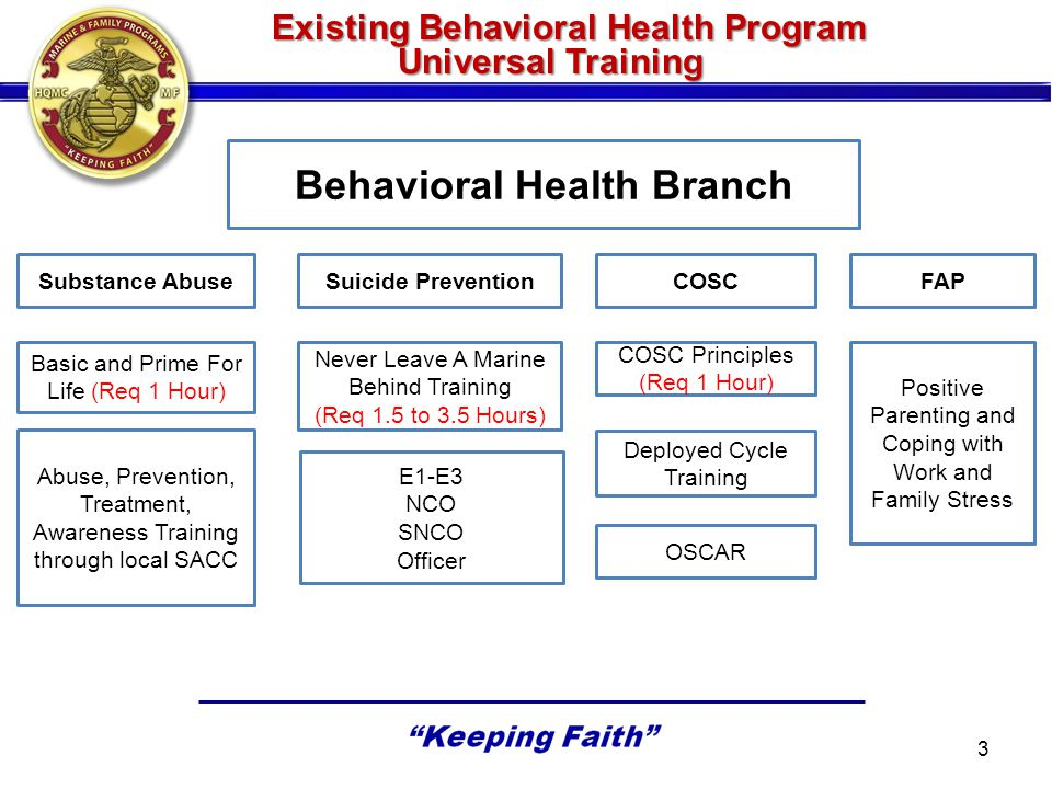 Existing Behavioral Health Program Universal Training