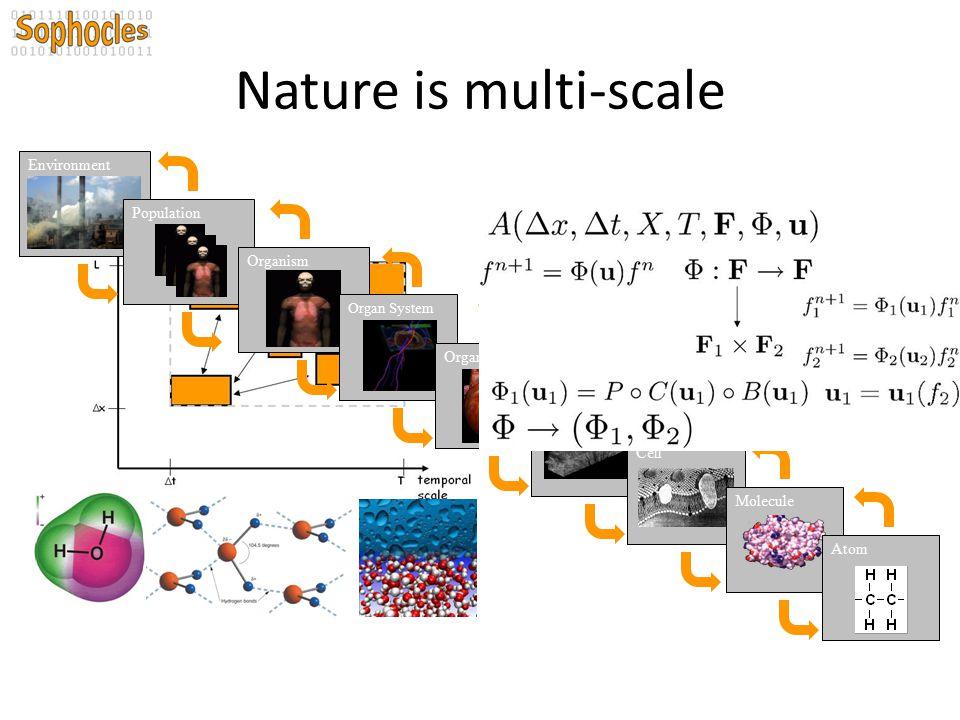 Nature is multi-scale Environment Population Organism Organ Tissue