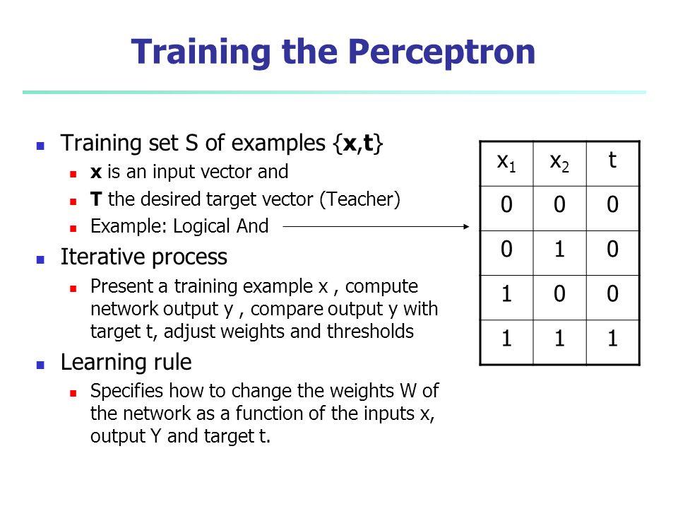 Training the Perceptron