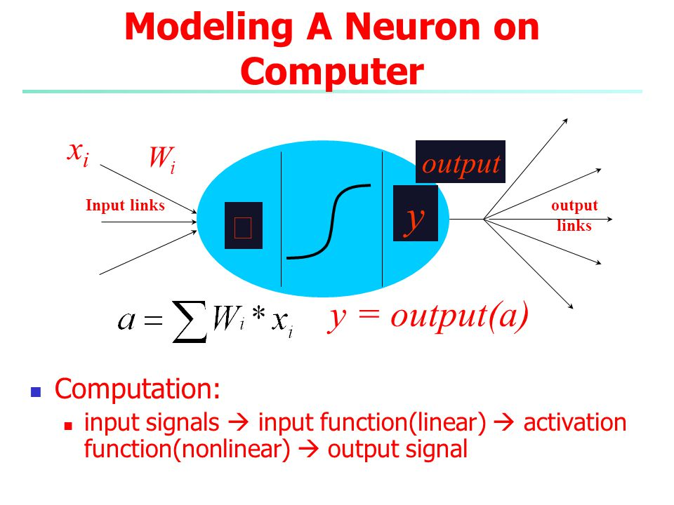 Modeling A Neuron on Computer