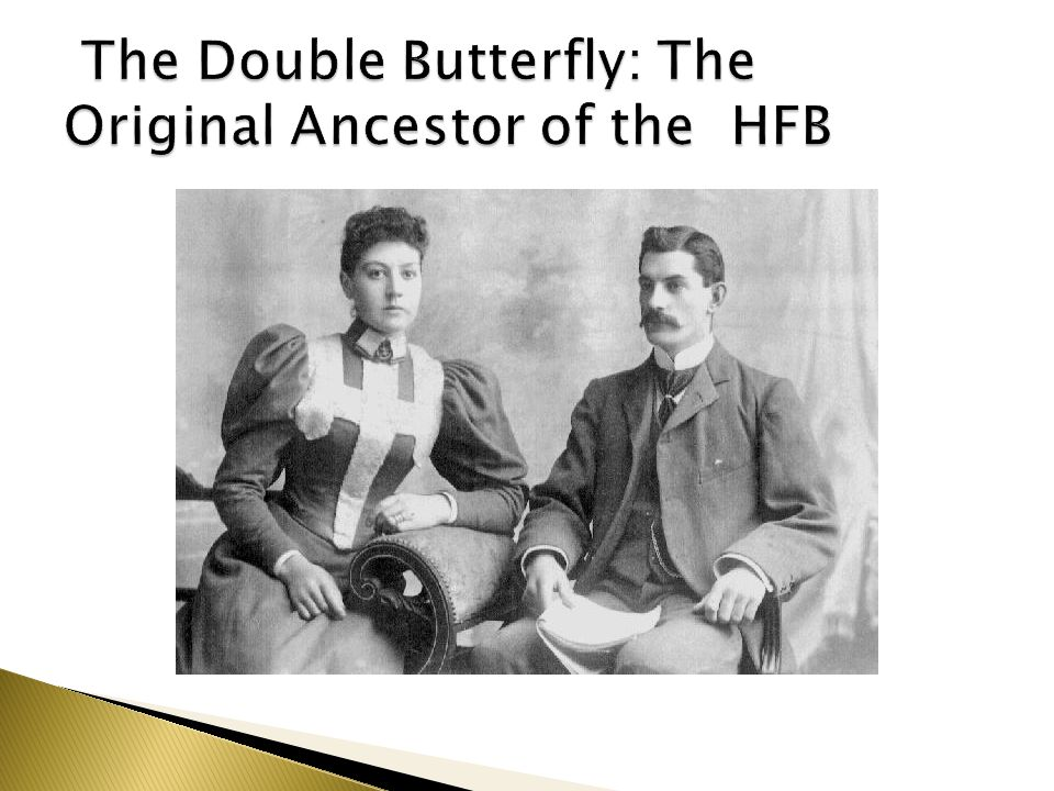 The Double Butterfly: The Original Ancestor of the HFB
