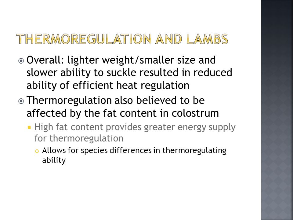 Thermoregulation and Lambs