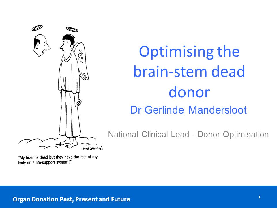 Optimising the brain-stem dead donor