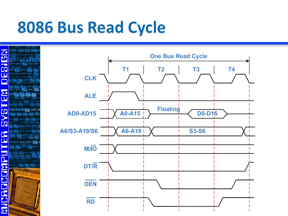 8086 Bus Read Cycle