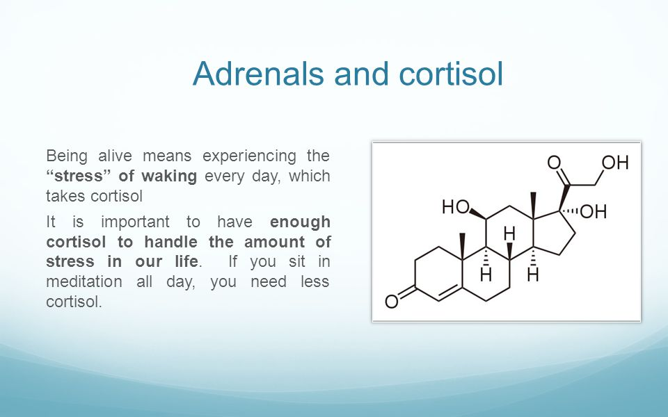 Adrenals and cortisol Being alive means experiencing the stress of waking every day, which takes cortisol.