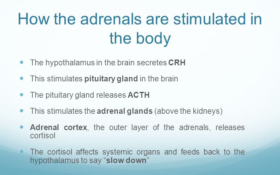 How the adrenals are stimulated in the body