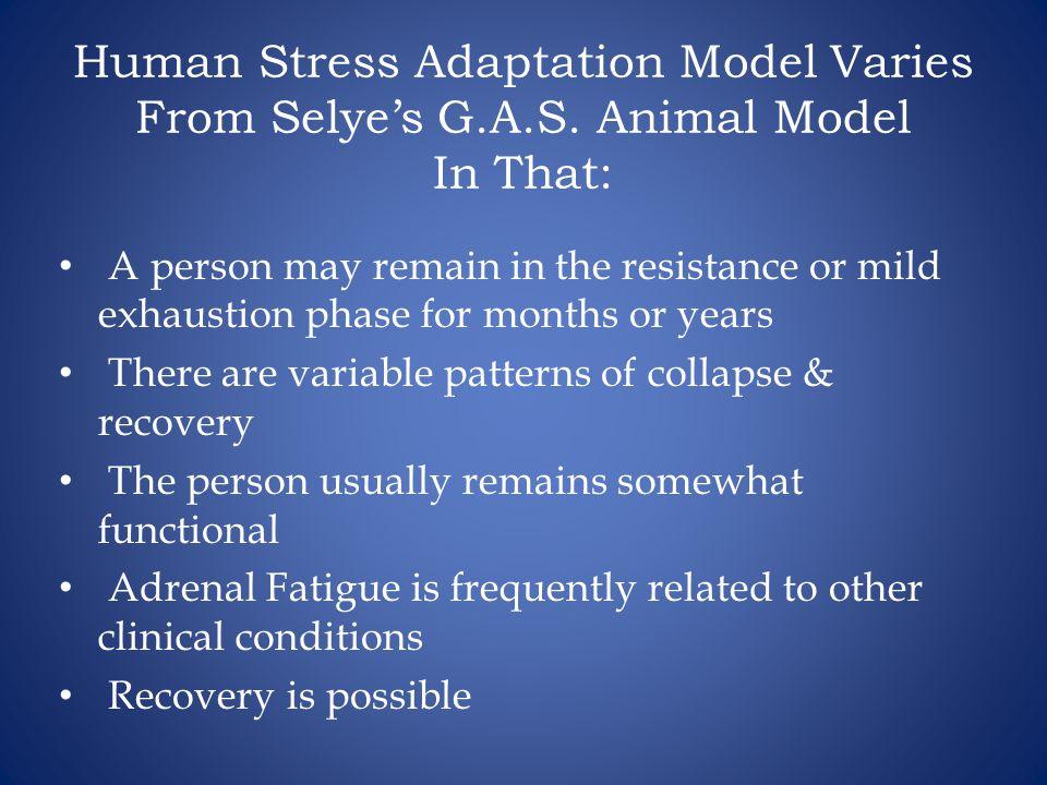 Human Stress Adaptation Model Varies From Selye's G. A. S