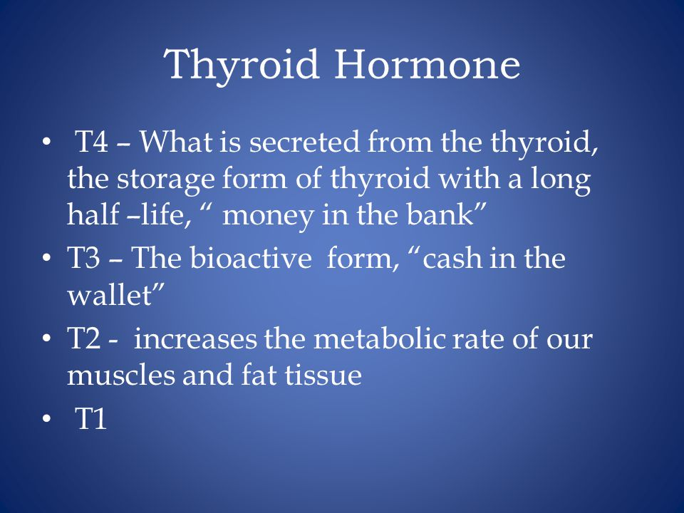 Thyroid Hormone T4 – What is secreted from the thyroid, the storage form of thyroid with a long half –life, money in the bank