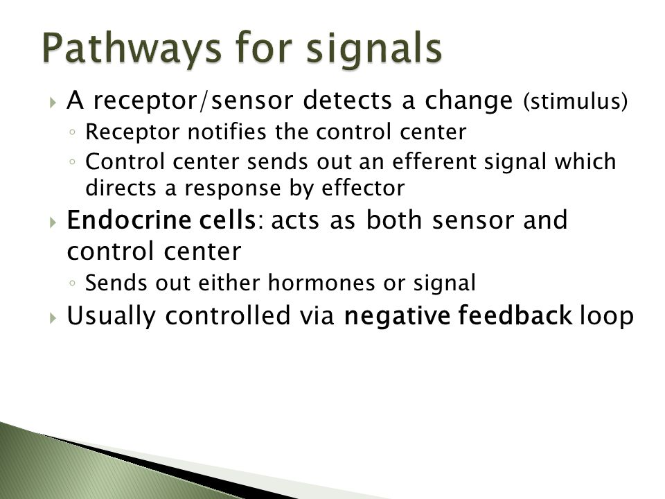 Pathways for signals A receptor/sensor detects a change (stimulus)