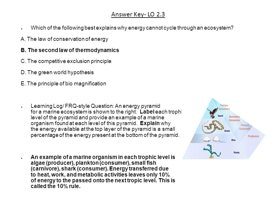 Answer Key- LO 2.3 Which of the following best explains why energy cannot cycle through an ecosystem