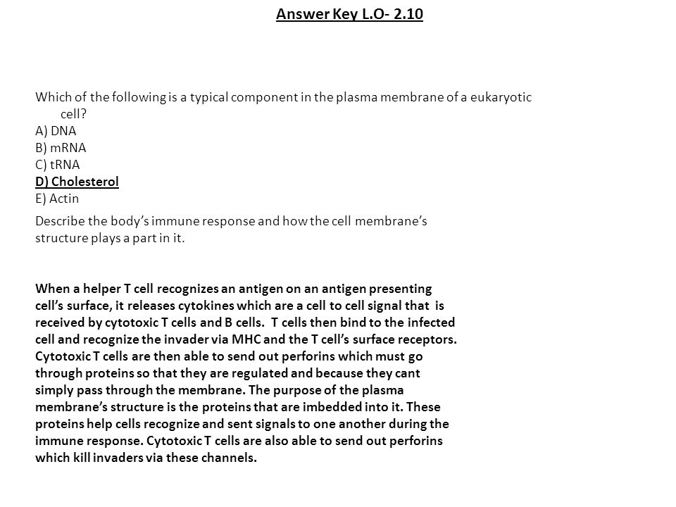 Answer Key L.O- 2.10 Which of the following is a typical component in the plasma membrane of a eukaryotic cell