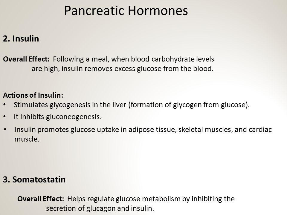 Pancreatic Hormones 2. Insulin 3. Somatostatin