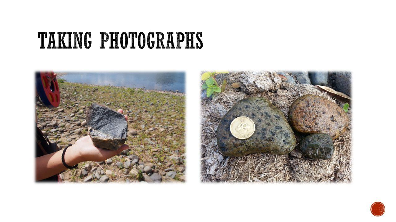 Taking Photographs