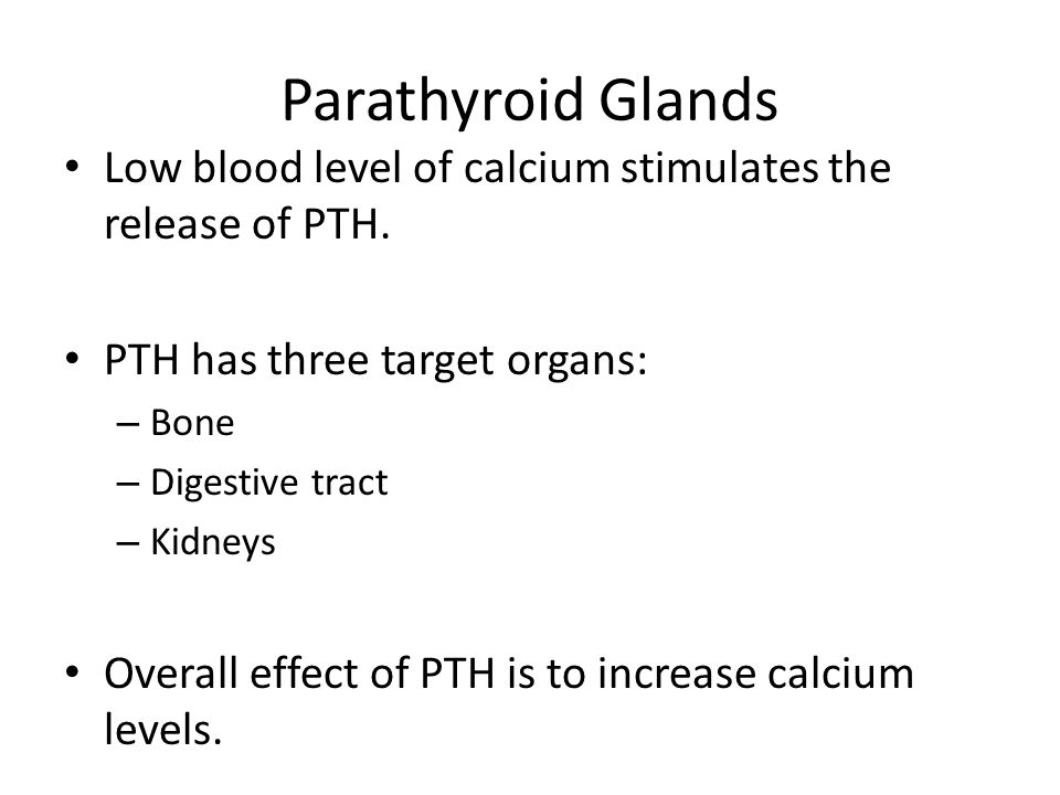 Parathyroid Glands Low blood level of calcium stimulates the release of PTH. PTH has three target organs:
