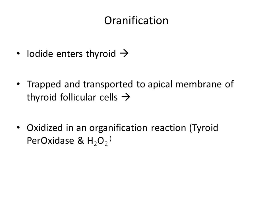 Oranification Iodide enters thyroid 