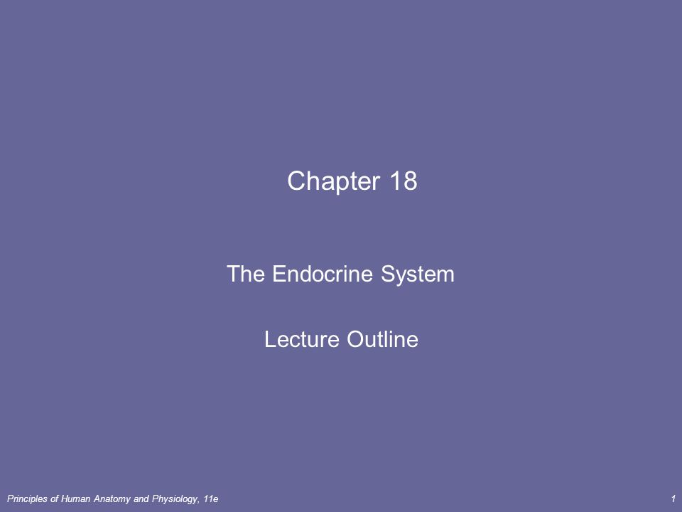 The Endocrine System Lecture Outline