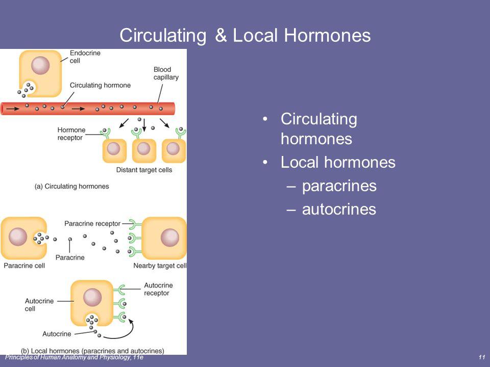 Circulating & Local Hormones
