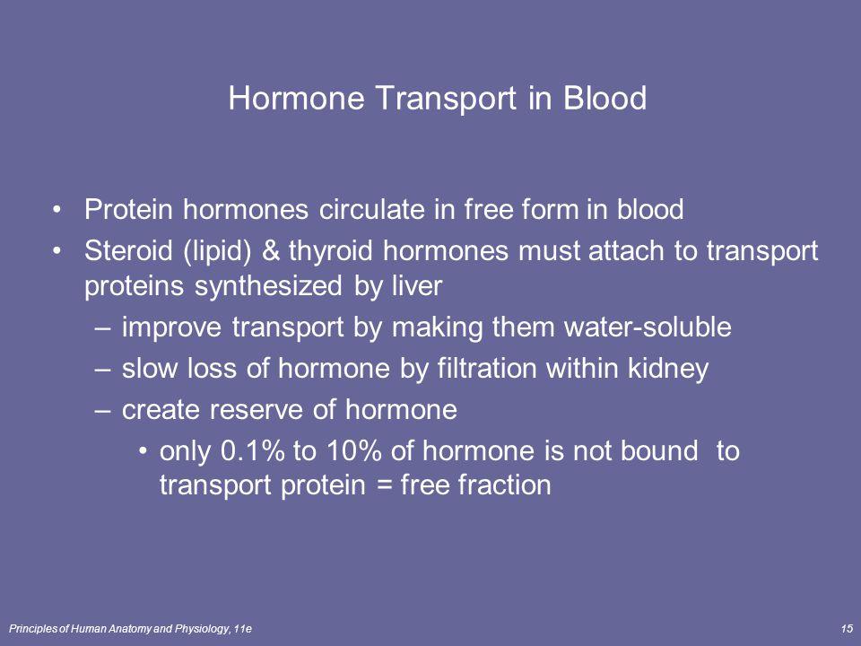Hormone Transport in Blood