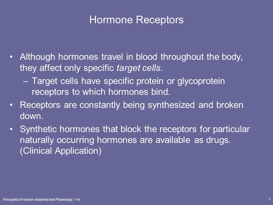Hormone Receptors Although hormones travel in blood throughout the body, they affect only specific target cells.