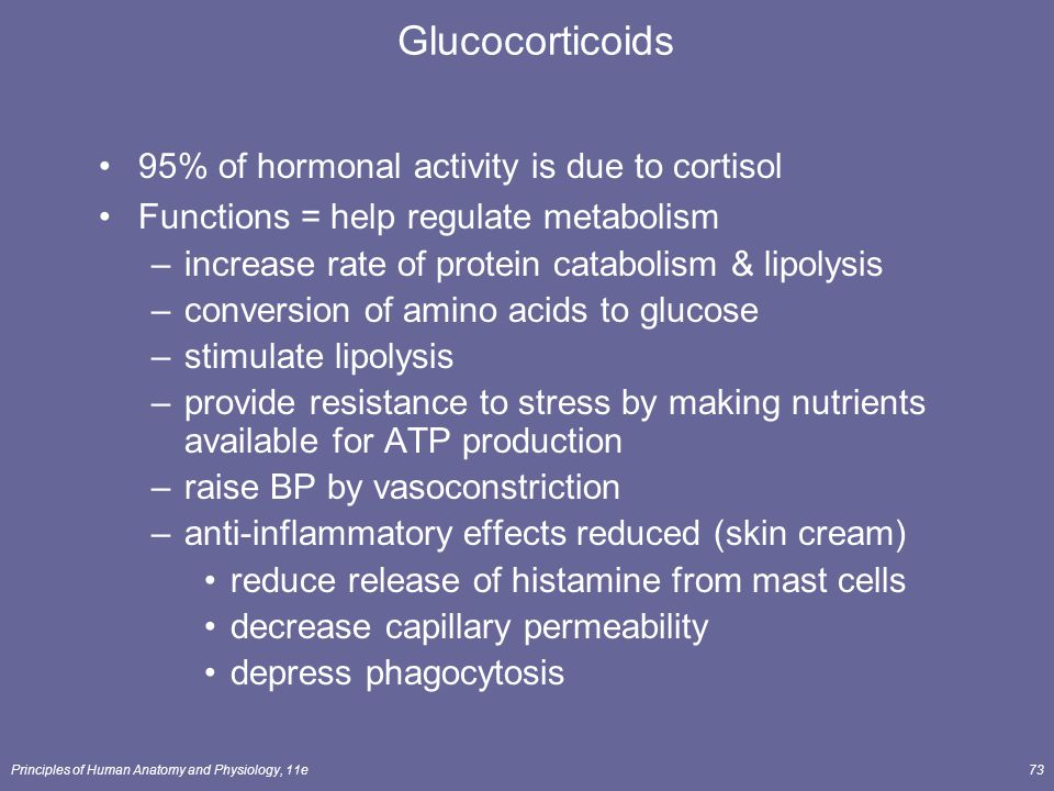 Glucocorticoids 95% of hormonal activity is due to cortisol