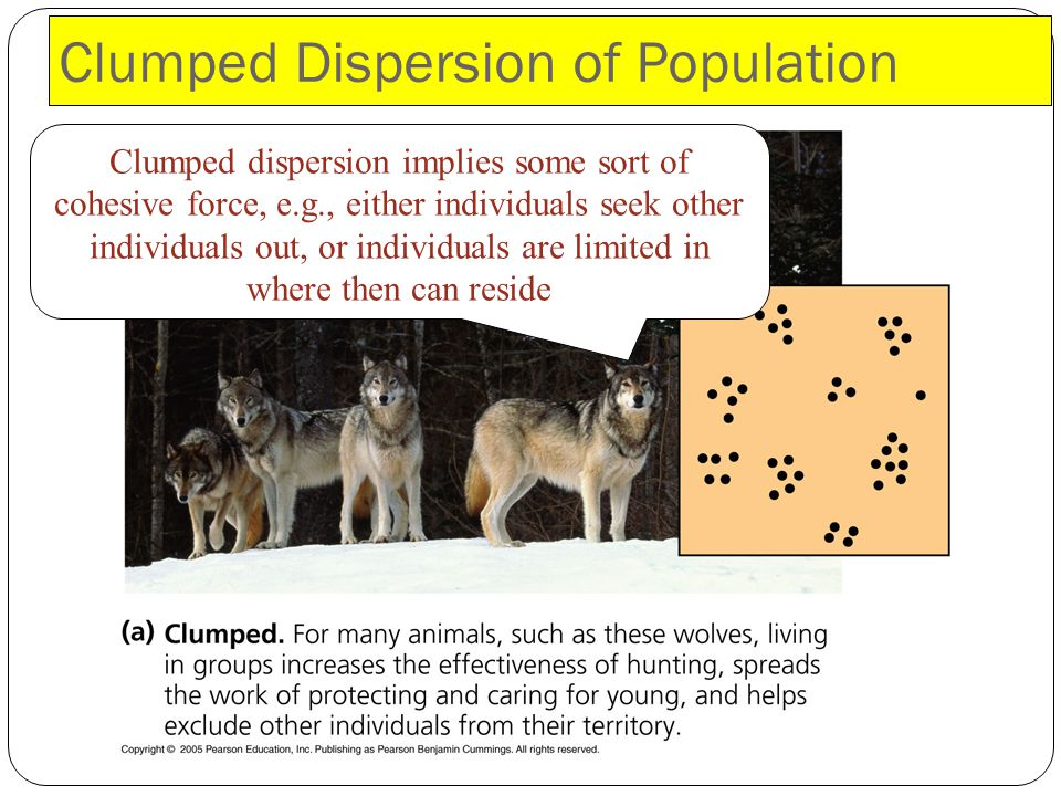 Clumped Dispersion of Population