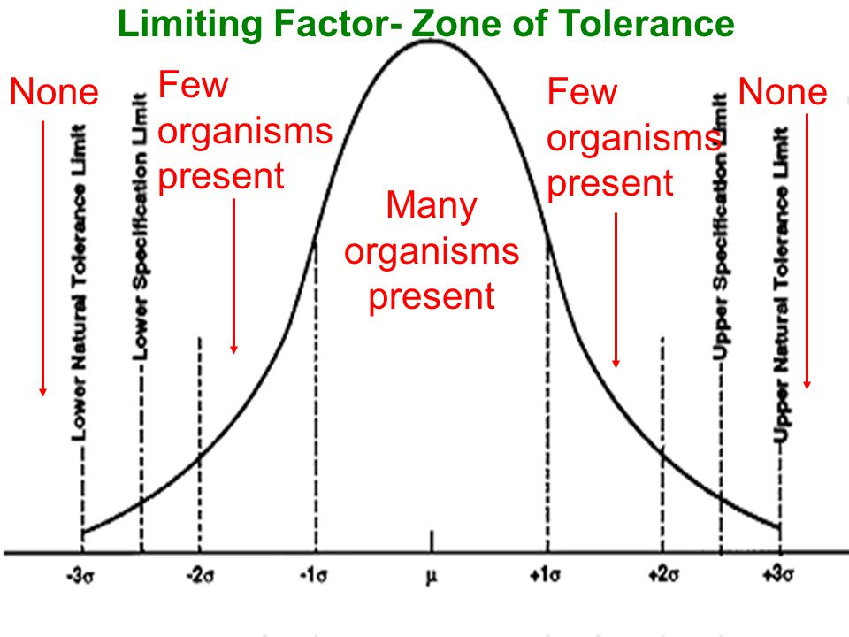 Limiting Factor- Zone of Tolerance