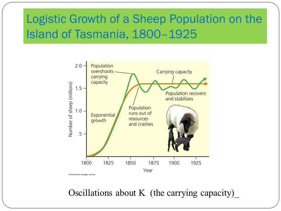 Logistic Growth of a Sheep Population on the Island of Tasmania, 1800–1925