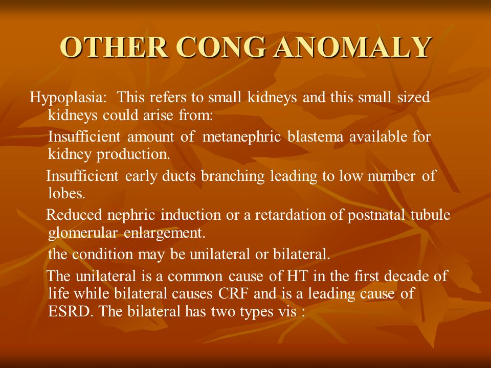 OTHER CONG ANOMALY Hypoplasia: This refers to small kidneys and this small sized kidneys could arise from: