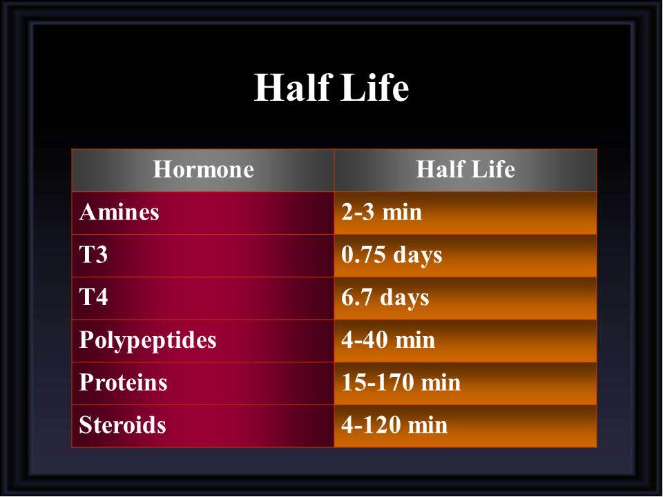 Half Life Hormone Half Life Amines 2-3 min T3 0.75 days T4 6.7 days