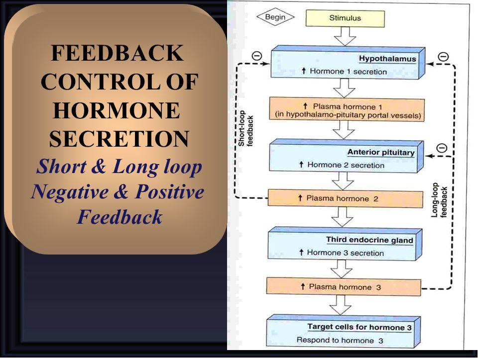 FEEDBACK CONTROL OF HORMONE SECRETION