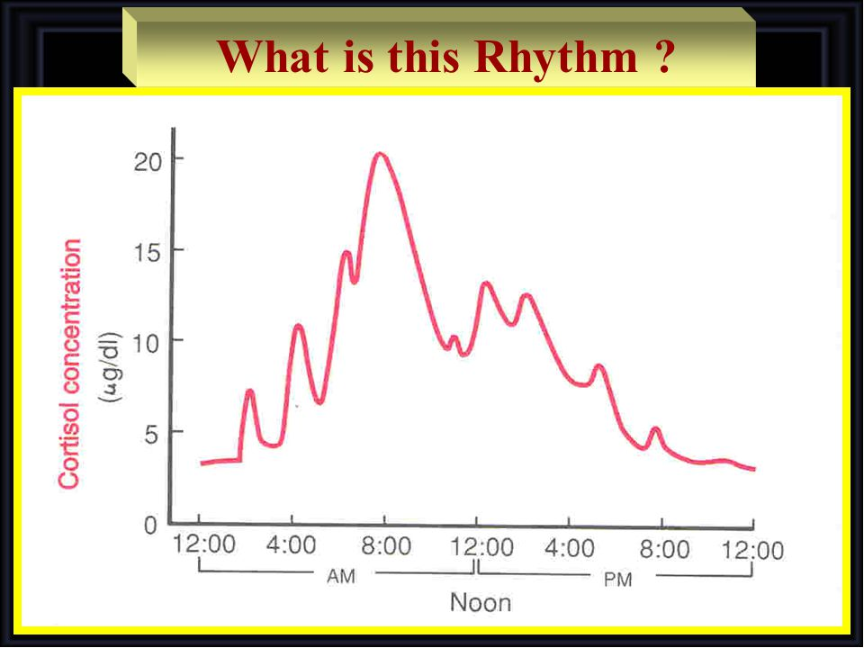 What is this Rhythm