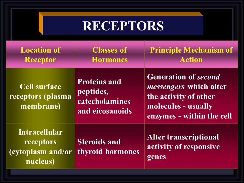 RECEPTORS Location of Receptor Classes of Hormones