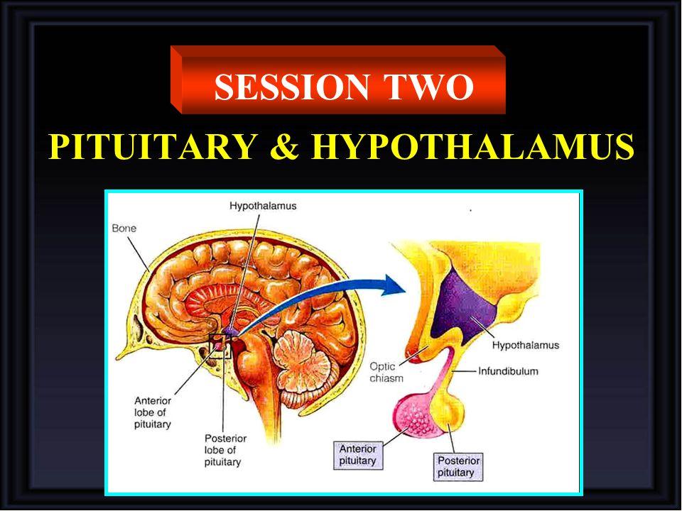 PITUITARY & HYPOTHALAMUS