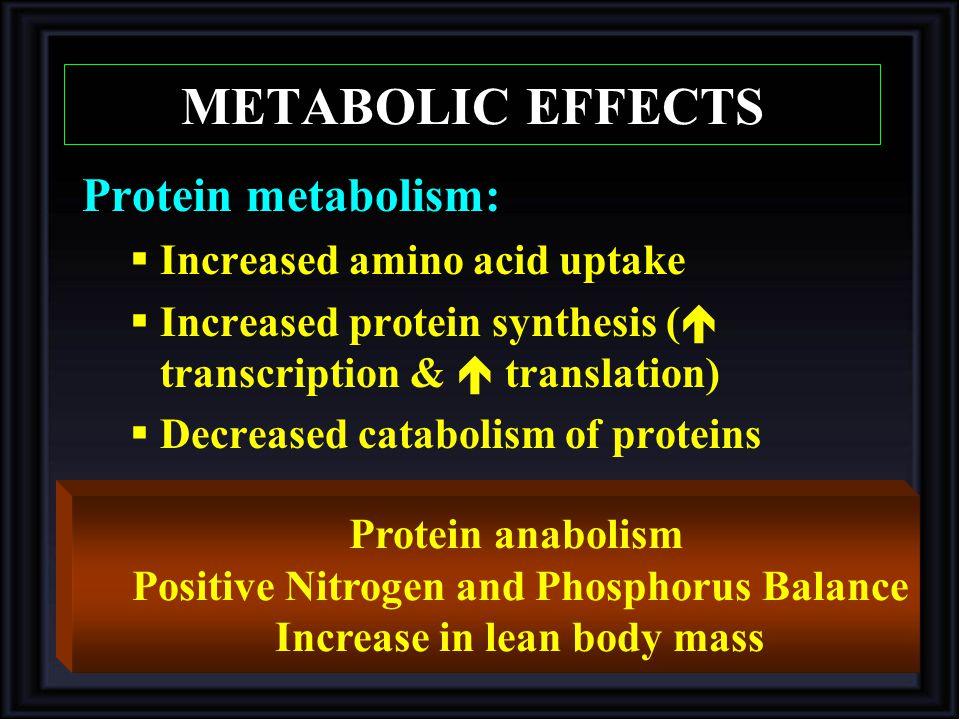 Positive Nitrogen and Phosphorus Balance Increase in lean body mass