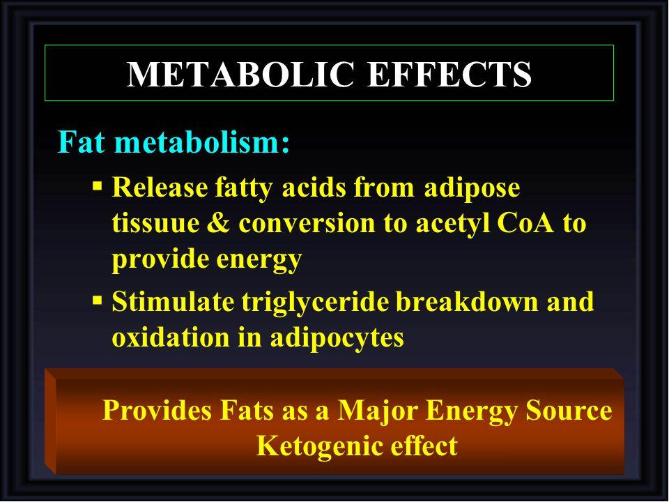 Provides Fats as a Major Energy Source