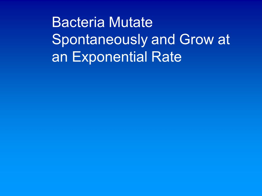 Bacteria Mutate Spontaneously and Grow at an Exponential Rate