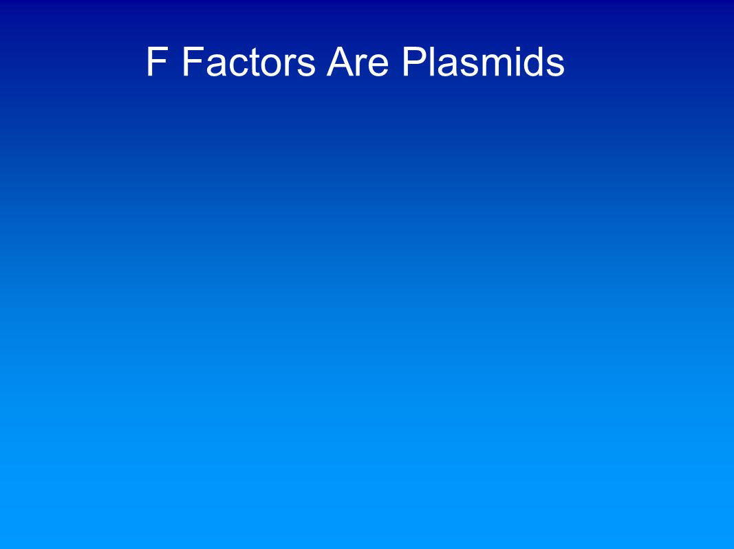 F Factors Are Plasmids