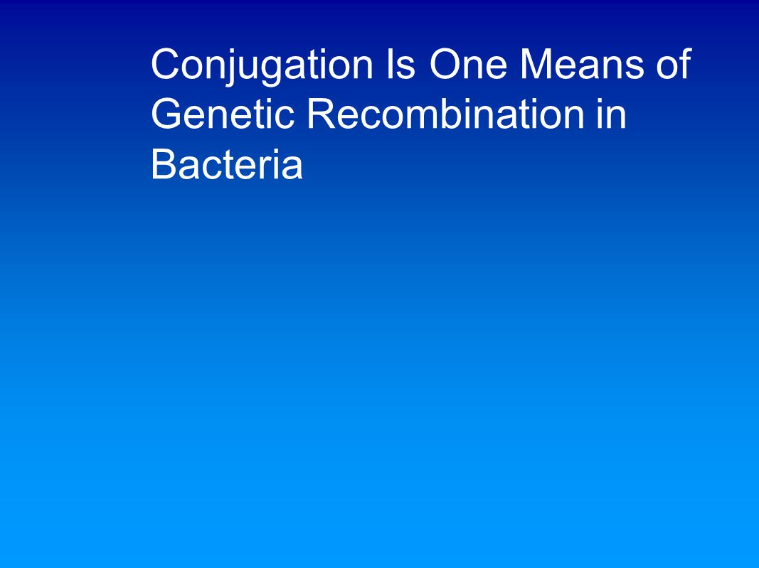Conjugation Is One Means of Genetic Recombination in Bacteria