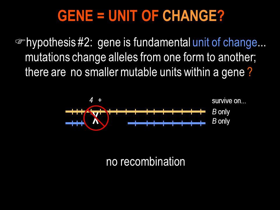 GENE = UNIT OF CHANGE
