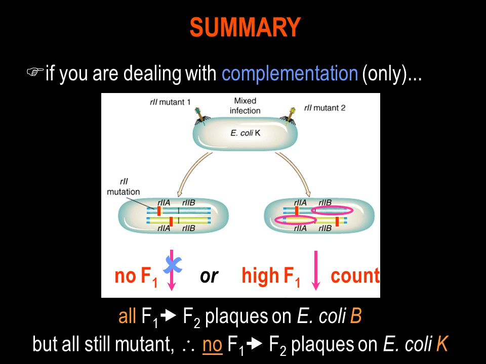  SUMMARY if you are dealing with complementation (only)...