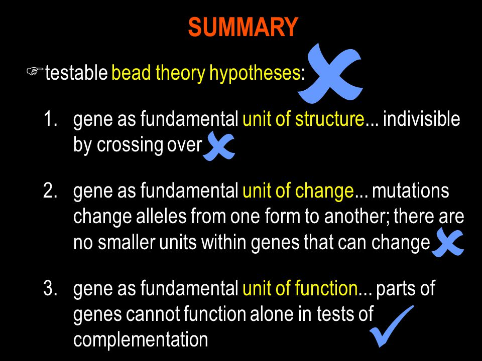     SUMMARY testable bead theory hypotheses: