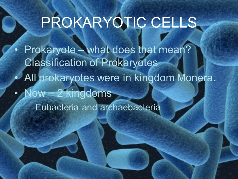 PROKARYOTIC CELLS Prokaryote – what does that mean Classification of Prokaryotes. All prokaryotes were in kingdom Monera.