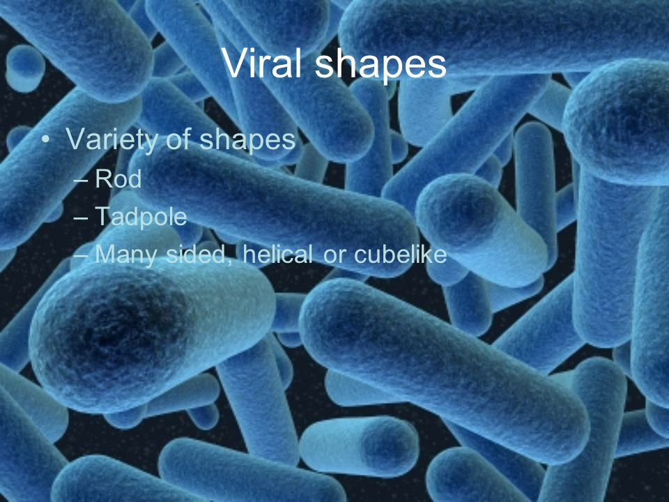 Viral shapes Variety of shapes Rod Tadpole