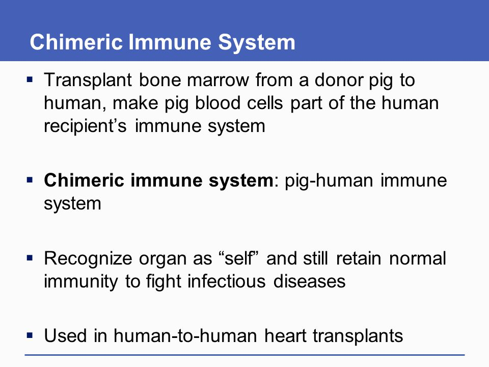 Chimeric Immune System
