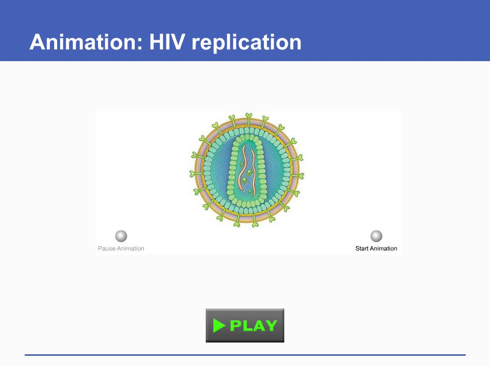 Animation: HIV replication
