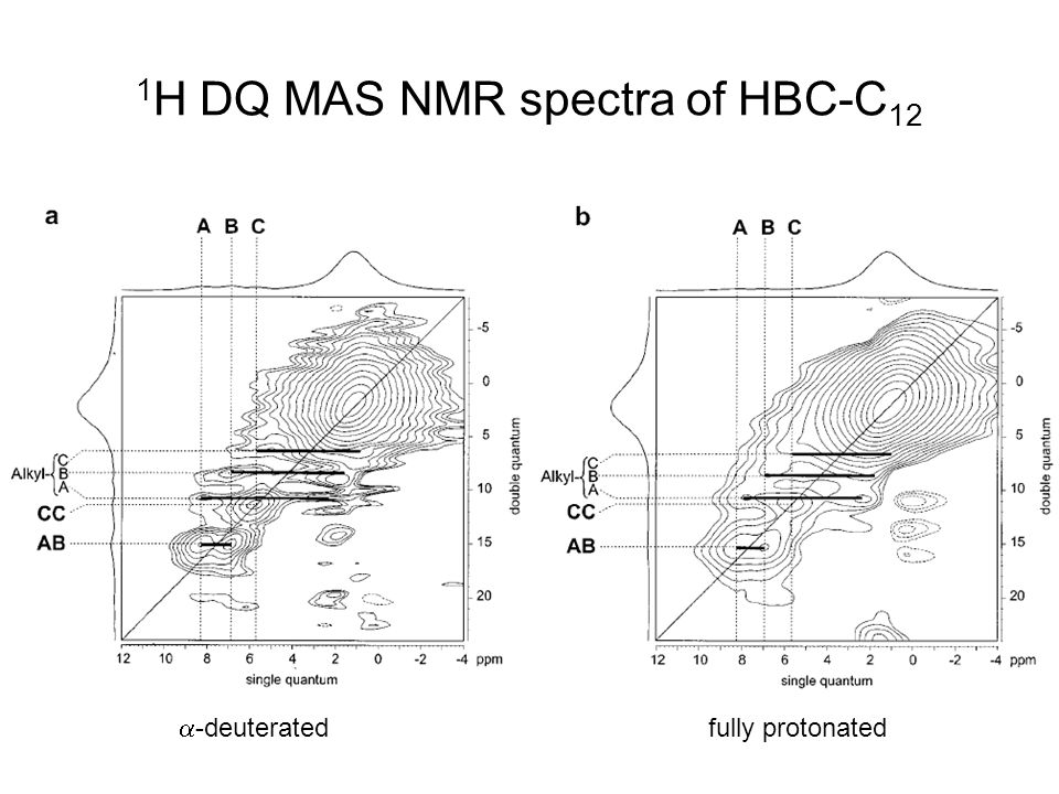 1H DQ MAS NMR spectra of HBC-C12