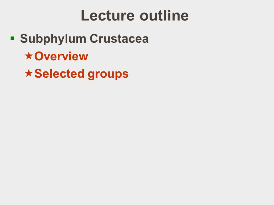Lecture outline Subphylum Crustacea Overview Selected groups